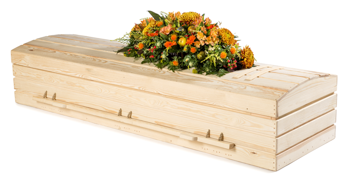 solid pine coffin